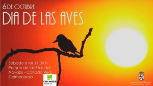11:30h. Día de las aves @ Parque de las Pilas del Navazo | Colmenarejo | Comunidad de Madrid | España